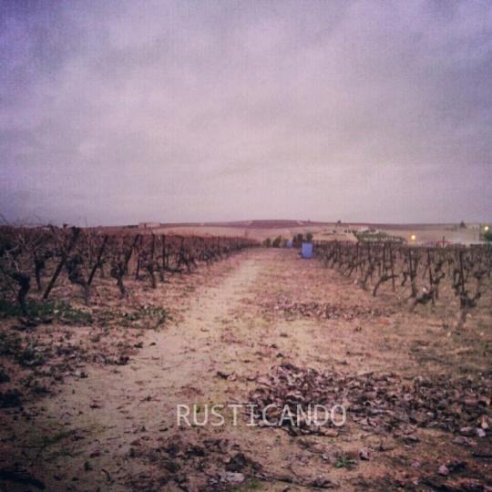 Rusticando pagos en Jerez de la Frontera