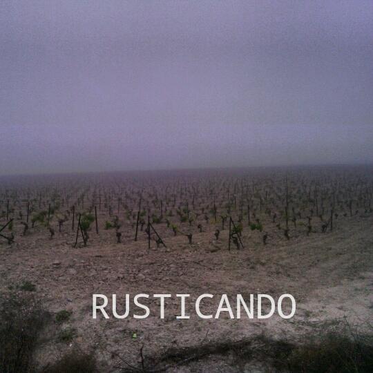 viñas en la niebla rusticando