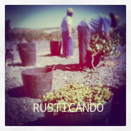 rusticando vendimia jerez sanlúcar 2014 04